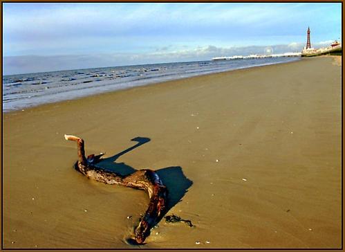 Blackpool Serpentine by MattHusala