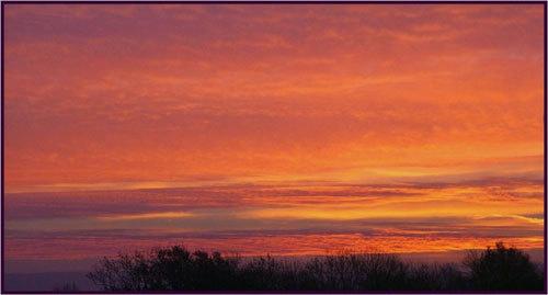 Morning Glory by alfsky