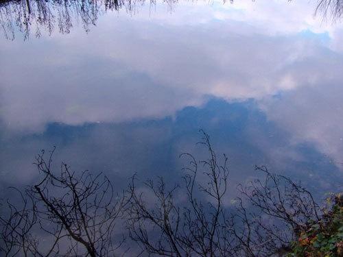 Riverside Reflection by alfsky
