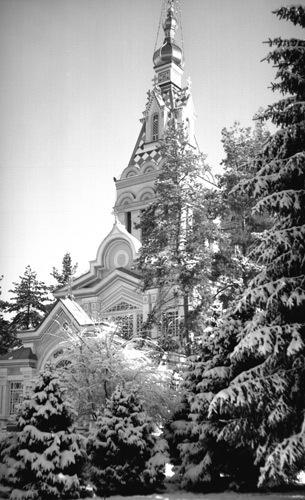 Winter Scene 3 by tudor