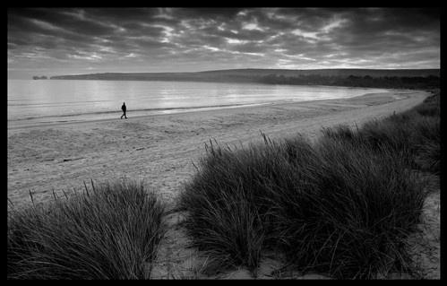 Studland Bay by Miles Herbert