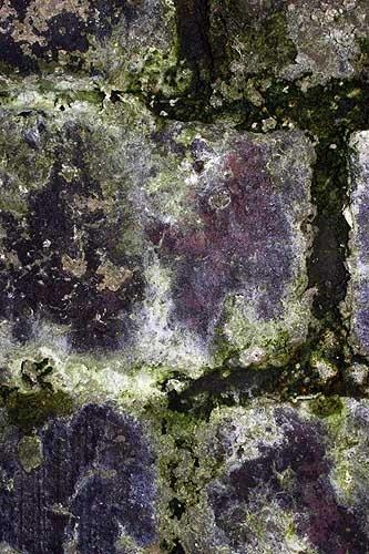 Green Bricks by ericfaragh
