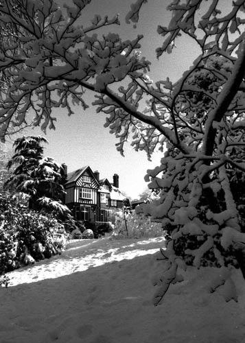 Snowy Day by victorburnside