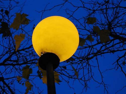 illumination by shellby