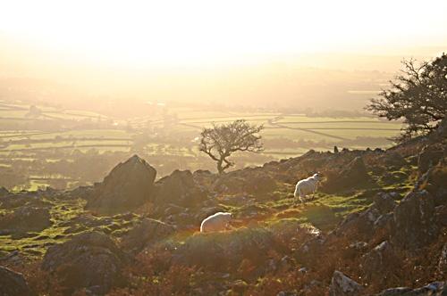 Sun setting Coxtor Dartmoor by RobMacormac