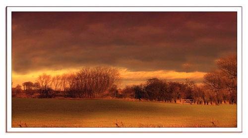 A Farmers Field by lyne