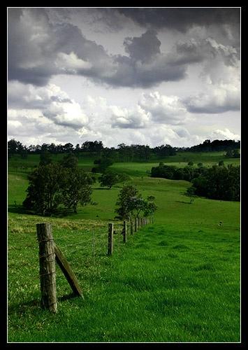 Ravensbourne by eafy