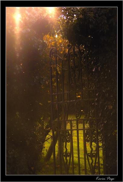 Secret Entrance by pagey