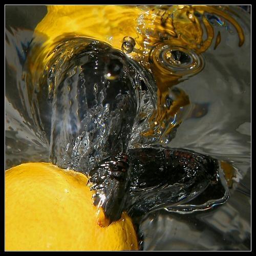 Lemon splash by paulstefan