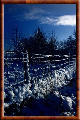 The Meadows by jeanie