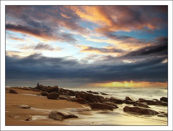 Dreamscape by tigerminx