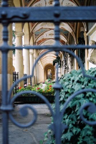 Graves Through a Gate by netti spaghetti
