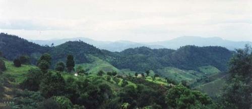 Gentle Burma by adamd