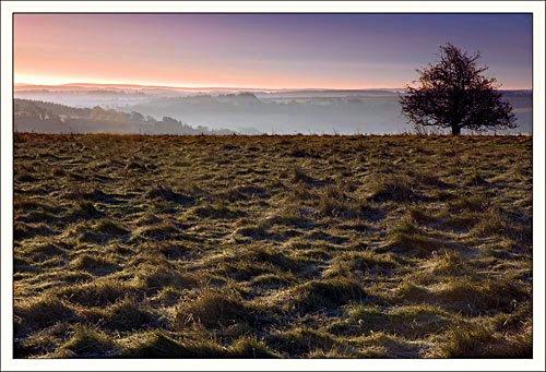 Overlooking Dorset by katieb