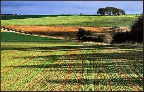 Avebury, looking towards Marlborough - 2 by joolsb