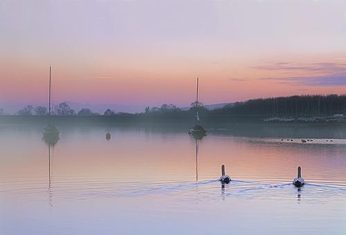 Rising Mist by cdm36