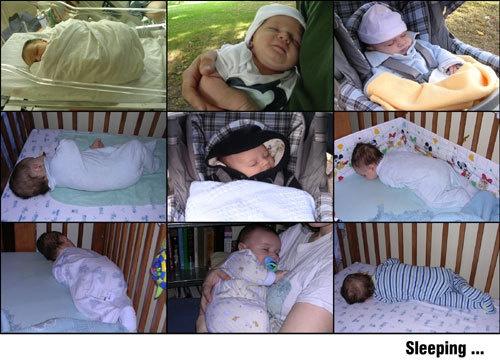 Sleeping... by silvina