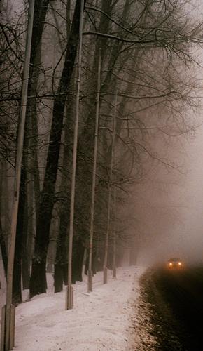 A foggy day 2 by tudor