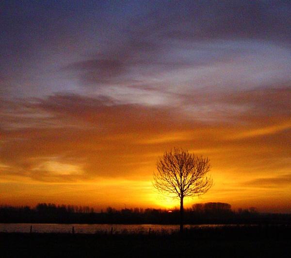 Dutch Dawn by conrad