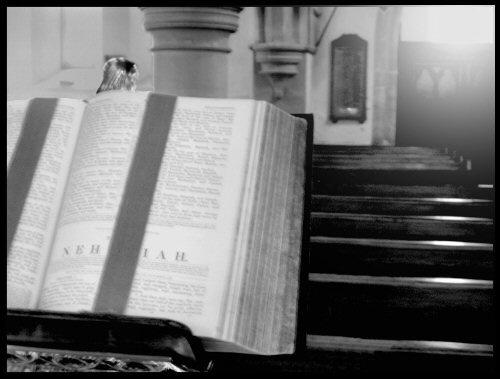 Bible by stevearm