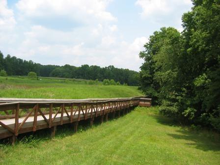 Bridge of Nature by cheop