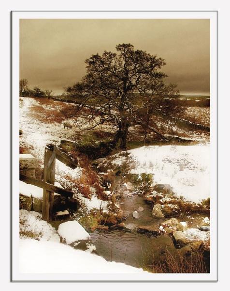 A Winter Scene by lyne