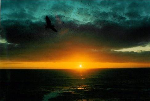 Sunset off Brighton pier by Baz Hilder