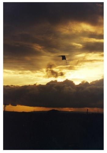 Kite by KirstyG