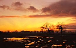 Backford Sunset