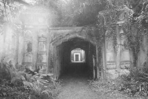 Highgate Cemetery by casey
