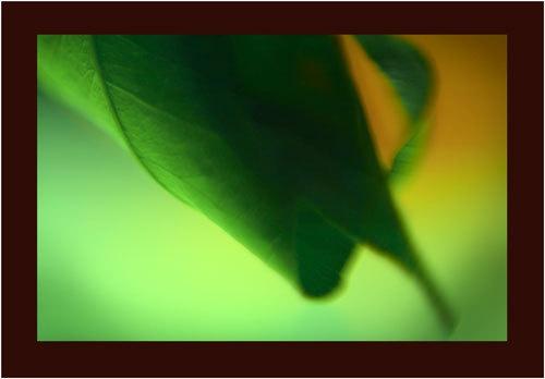 green by kelart