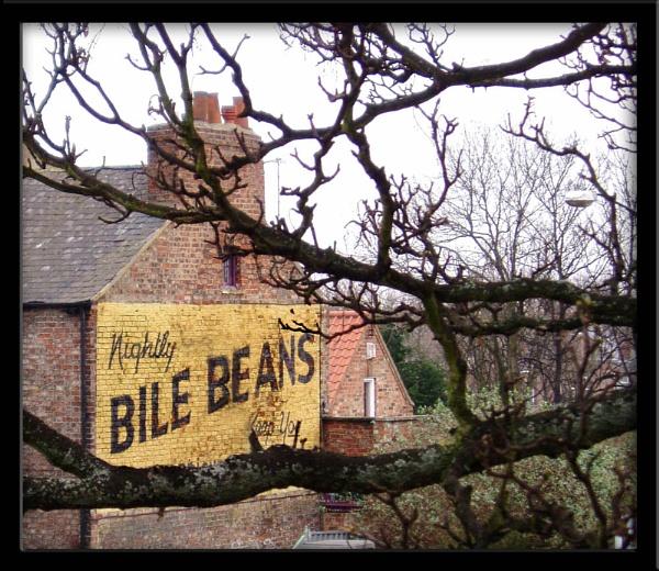 Bile Beans (!!) by Dinda