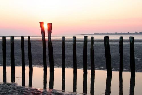 Reflective Posts by stevo_h