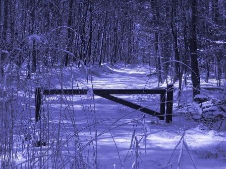 Winter Cross Gate by cheop