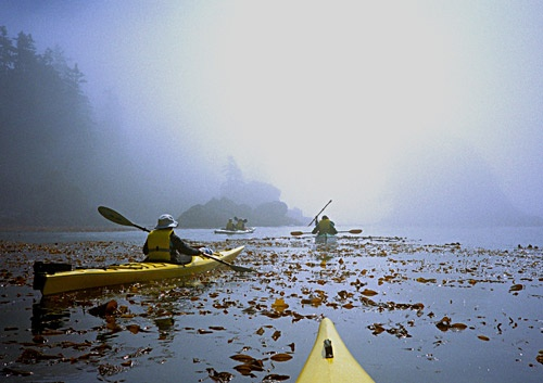 Kayaking in the mist by Thunderace