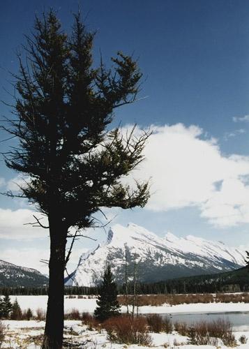 Mount Rundle by da_nige