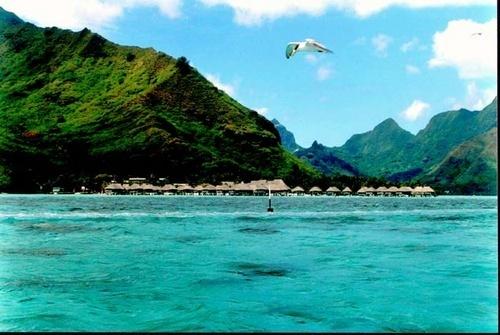 Moorea, French Polynesia by the_lane