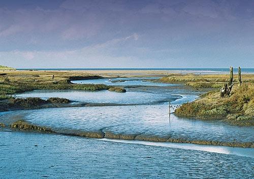 Thornham Marsh by seabloke