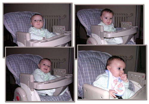 The new highchair by silvina
