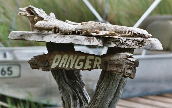 Crocodile Danger! by lloydy