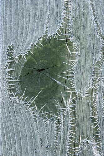 ice door by lensman
