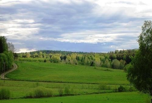 green view by Poziomka