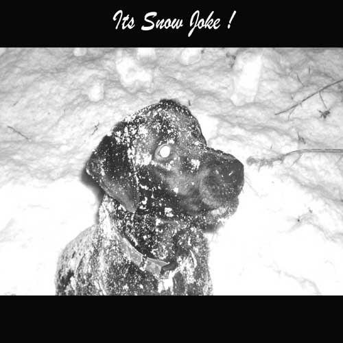 Snow Joke by Kodak_Kid