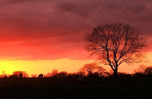 salmesbury sunset by siderath