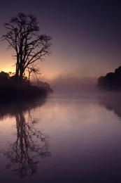 Clumber Dawn 2