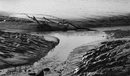 Receding tide by gma