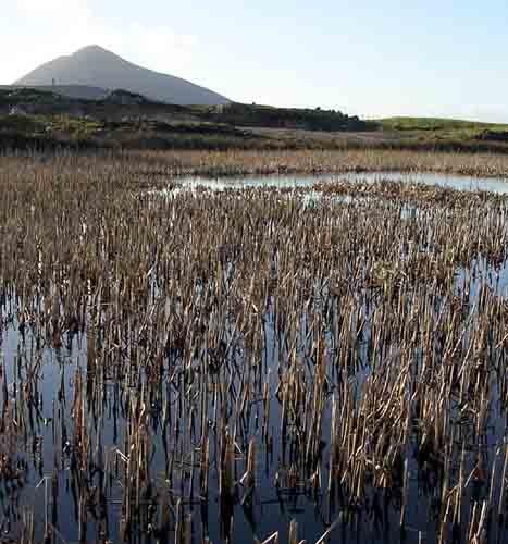 Slievemor - Achill by wmccartney