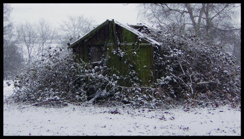 Abandoned - another season by jenny