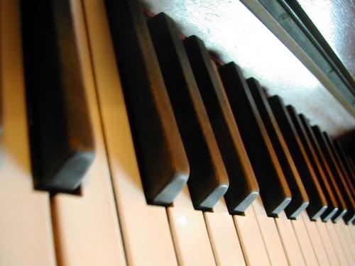Musicality by jackwatson