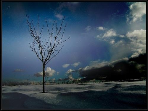 Winter scenery good night ! by evropan